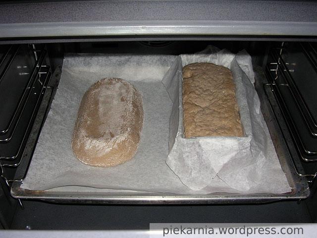 Ciasto po włożeniu do piekarnika